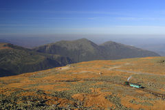 White Mountains. Alpine meadow on the top of New Hampshire's White Mountains Stock Images