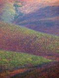 White mountains Stock Photography