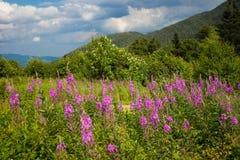White Mountains NH Stock Photo