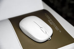White mouse Royalty Free Stock Image