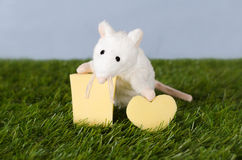 White mouse with cheese in the shape of heart Royalty Free Stock Photos