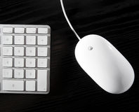 The white mouse and the keyboard Stock Photo