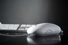 The white mouse and the keyboard Stock Photos