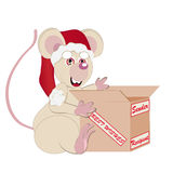 White mouse and pack Christmas Stock Image