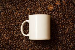 White mug against coffee beans with anise stars lying like steam. Closeup shot of white mug against coffee beans with anise stars lying like steam Stock Photos