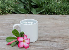 White mug on dry wood Stock Photo