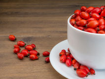 White mug filled with briar fruit Stock Image