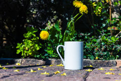 White mug in garden with flowers in background Stock Image
