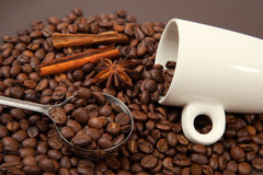 White mug and scattering coffee beans Stock Image
