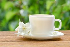 White mug of tea with jasmine on a background greenery, sunlight. Close-up Stock Images