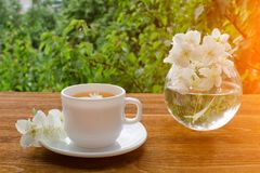 White mug of tea and a vase with jasmine on a wooden table, greens on the background Royalty Free Stock Images