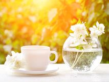 White mug of tea and a vase with jasmine on a wooden table, greens on the background, sunlight Stock Photos