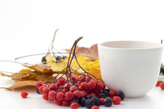 White mug of tea on a white background with autumn leaves. White mug of tea with autumn leaves Stock Photography