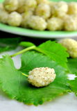 White mulberries Stock Image