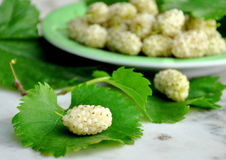 White mulberries Stock Photo