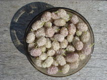 White mulberries in bowl Stock Image