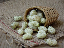 White mulberry in a basket. On a wooden background stock photos