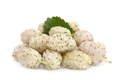 White mulberry fruit Royalty Free Stock Photo