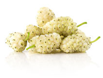 White mulberry isolated on the white background stock images
