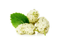 White mulberry with leaf on white background Stock Photos