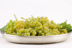 White muscat grapes in metal tray isolated on white. Group of white muscat grapes in metal tray isolated on white Stock Photos