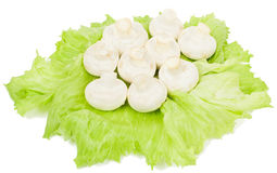 White mushroom. Champignon mushroom on a green lettuce leaf   on white background Stock Photos
