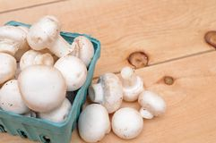 White mushroom in basket Royalty Free Stock Photos