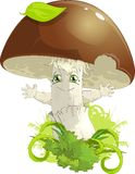 White mushroom Royalty Free Stock Photos