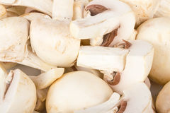 White mushroom cuts background Stock Images