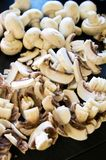 White mushrooms as pizza ingredients Stock Photos