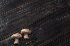 White mushrooms on black boards. Small white mushrooms on black boards Stock Image