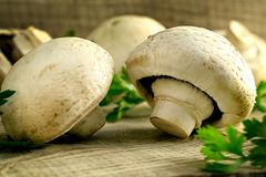 White mushrooms champignons, parsley, old wooden table. Rustic style, selective focus Royalty Free Stock Photography