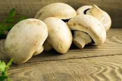 White mushrooms champignons, parsley, old wooden table. Rustic style, selective focus Stock Photos