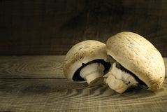 White mushrooms champignons on a wooden table. Two white mushrooms of champignon on a rough textured wooden table. Country style Stock Images