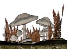 White mushrooms - 3D render. White mushrooms and vegetation in white background - 3D render vector illustration