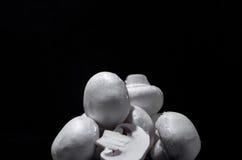 White mushrooms. Isolated on black background Royalty Free Stock Photo