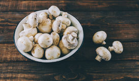 Mushrooms In Plate royalty free stock photography