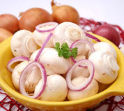 White mushrooms Royalty Free Stock Photos