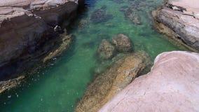 white na plaży dryftowego morza Śródziemnego połowów tuńczyka morski netto Morze krajobraz Cypr z skalistym brzeg zdjęcie wideo