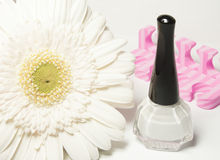 White nail polish and white flower Stock Image