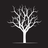 White naked Tree on black background. Vector Illustration Stock Photography