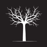White naked Tree on black background. Vector Illustration Royalty Free Stock Photos