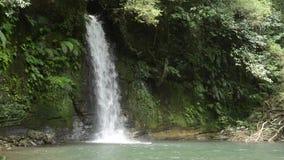 White narrow waterfall