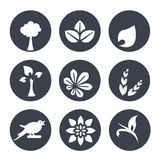 White natural symbols - nature abstract element with leaf, tree, flower, spikelet and bird, bio organic simple design in the circl Royalty Free Stock Photo