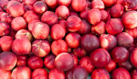 White nectarines on display Royalty Free Stock Photos