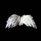 White neon angel wings Stock Image
