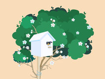 A white nesting box on a blossoming tree Stock Photo
