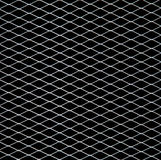 White net on black Stock Image