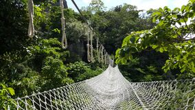 White Net Bridge Across Forest Under Clear Sky Stock Image