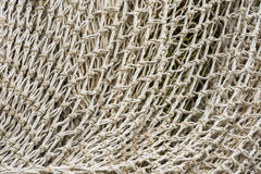White net Stock Photography
